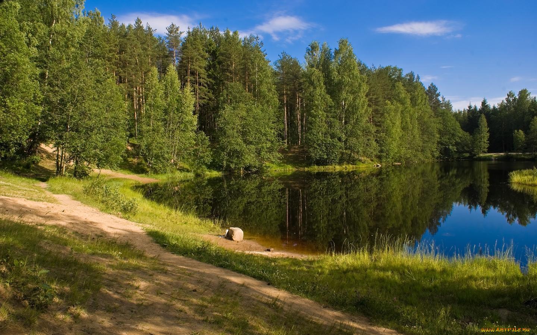 Пейзаж картинки природа на телефон